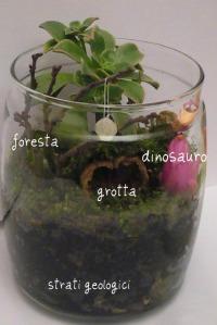 terrarium preistoria 2b