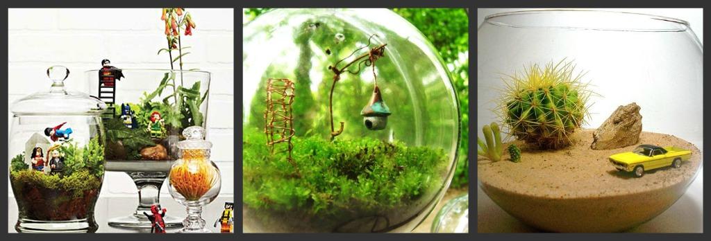 Idee per fare un terrarium con i bambini