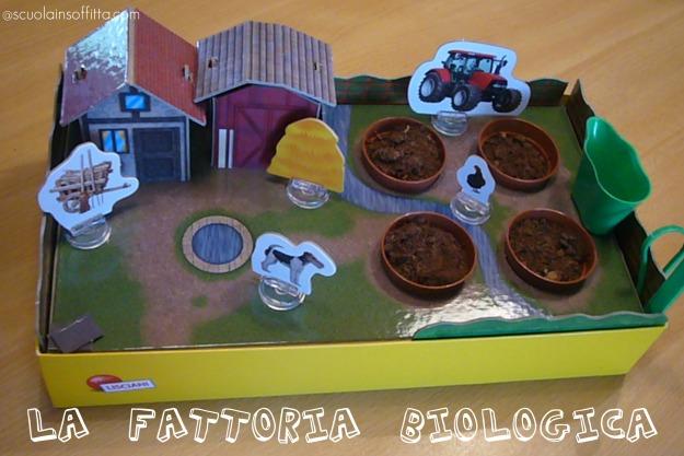 fattoria_biologica3