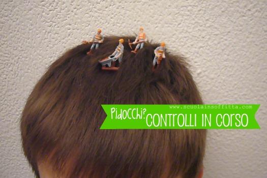 riconoscere_pidocchi